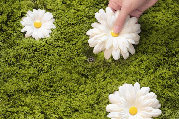 daisy-carpet-joe-jin-2