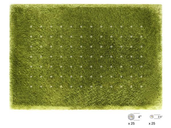 daisy-carpet-joe-jin-4