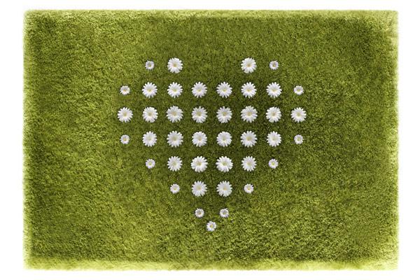 daisy-carpet-joe-jin-5